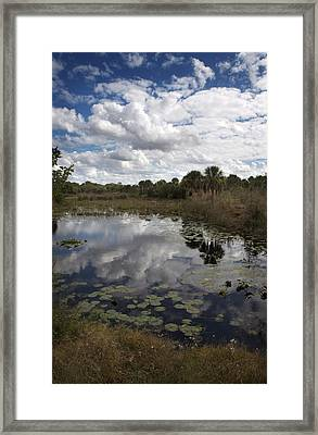 Freedom Park Framed Print