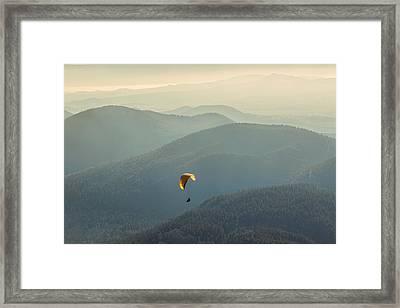 Freedom Framed Print by Radu Razvan