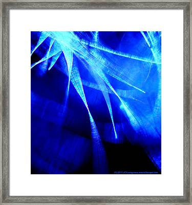 Freedom Spirit Framed Print by JCYoung MacroXscape