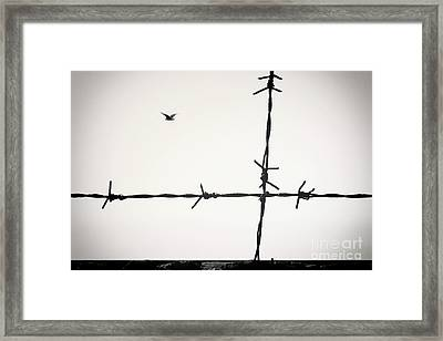 Freedom To Be Yourself... Framed Print