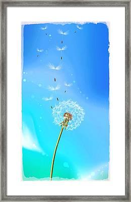Freedom Framed Print by Veronica Minozzi