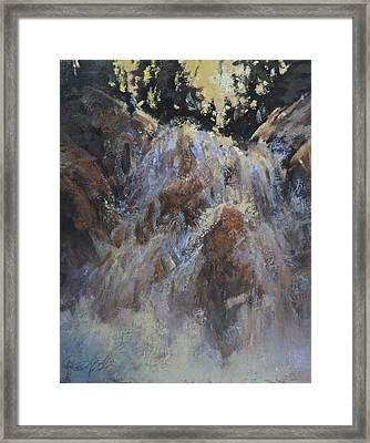 Freefall Framed Print