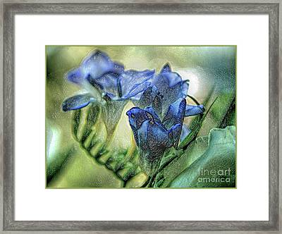 Framed Print featuring the photograph Freesia Carved In Blue by Lance Sheridan-Peel