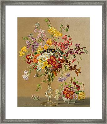 Freesias And Primroses Framed Print by Albert Williams