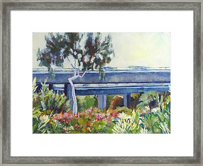 Freeway In The Garden Framed Print