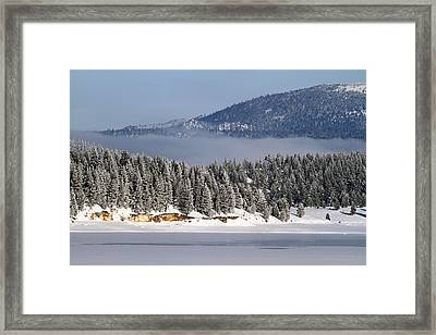 Freezing Fog And Frosty Trees Framed Print