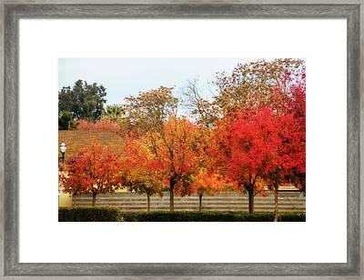 Fremont Street In Autumn Framed Print