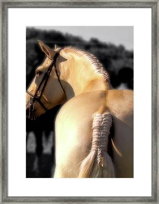 French Braid Framed Print by JAMART Photography