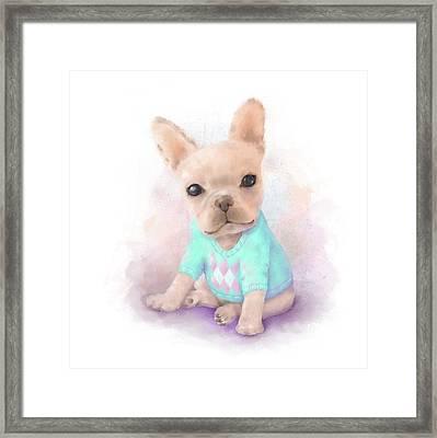 French Bull Dog Framed Print