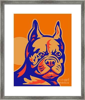 French Bulldog Head Portrait Retro Framed Print by Aloysius Patrimonio