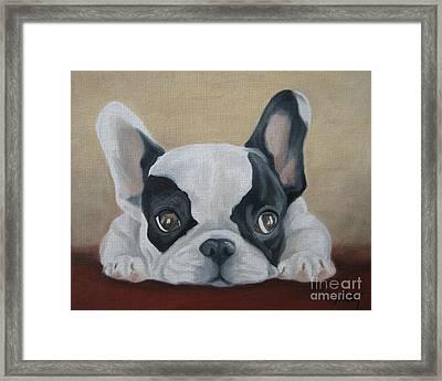 French Bulldog Framed Print by Jindra Noewi