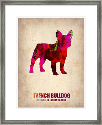 French Bulldog Poster Framed Print