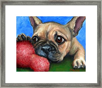 French Bulldog Puppy With Toy Framed Print by Dottie Dracos