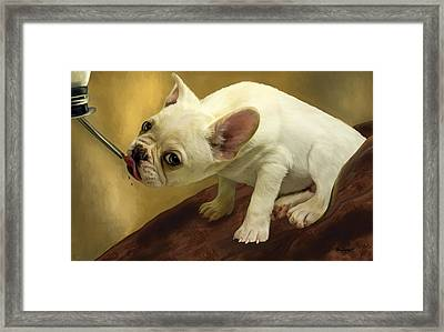 Framed Print featuring the digital art French Bulldog  by Thanh Thuy Nguyen