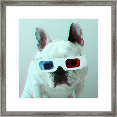 French Bulldog With 3d Glasses Framed Print