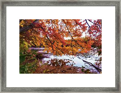 French Creek 15-107 Framed Print