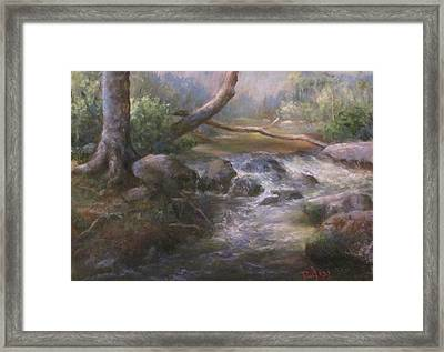 French Creek Framed Print