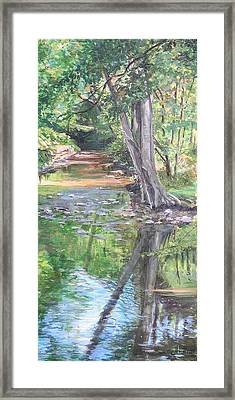 French Creek Framed Print by Denise Ivey Telep