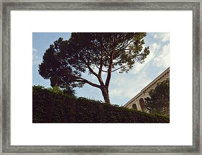 French Embassy Framed Print by JAMART Photography