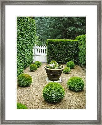 French Garden V Framed Print by Wendy Uvino