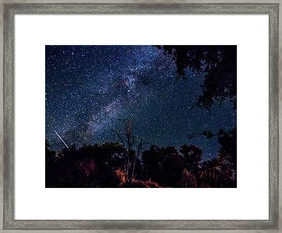 French Gulch Parseids Framed Print by Michele James