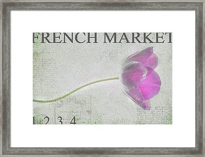 French Market Series D Framed Print by Rebecca Cozart