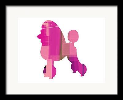 Poodle Mixed Media Framed Prints