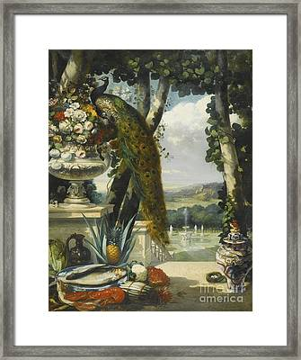French Still Life With Peacock Framed Print