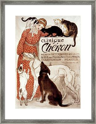 French Veterinary Clinic Framed Print