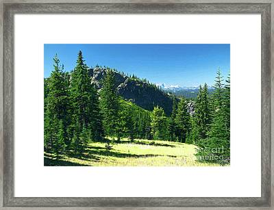 Framed Print featuring the photograph Fresh Air In The Mountains Photo Art by Sharon Talson