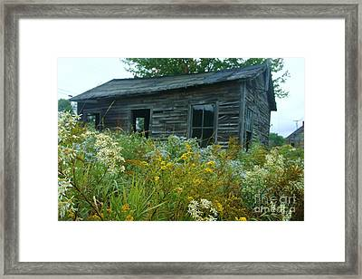 Fresh And Old Framed Print by Dennis Curry