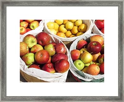 Fresh Apple Framed Print