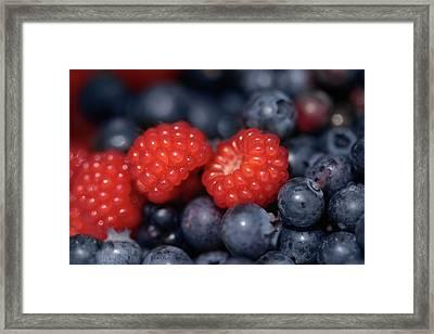 Fresh Berries Framed Print