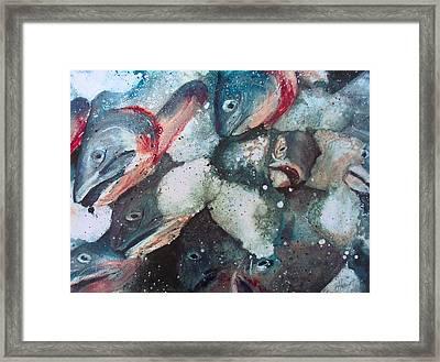 Fresh Catch Framed Print by Victoria Heryet