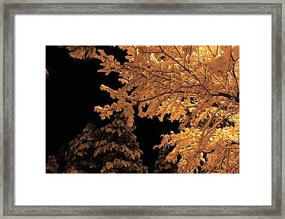 Fresh Cloak Framed Print by Gary Kaylor
