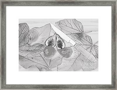 Fresh Figs. Digital Art Framed Print