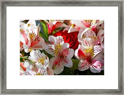 Fresh Flowers Framed Print