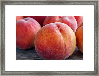 Fresh From The Orchard Framed Print by Teri Virbickis