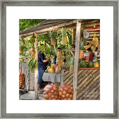 Fresh Fruits For The Day Framed Print