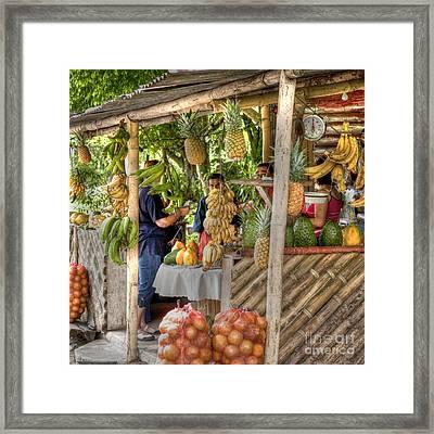 Fresh Fruits For The Day Framed Print