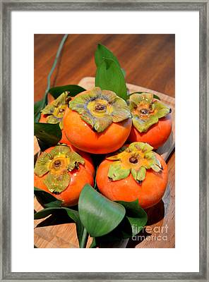 Fresh Fuyu Persimmons Framed Print by Mary Deal