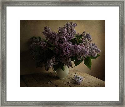Fresh Lilac In White Pot Framed Print by Jaroslaw Blaminsky
