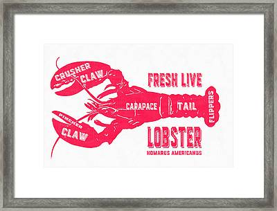 Fresh Live Lobster Vintage Sign Framed Print by Edward Fielding