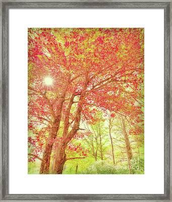 Fresh Morning Framed Print