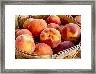 Fresh Peaches Framed Print by Teri Virbickis