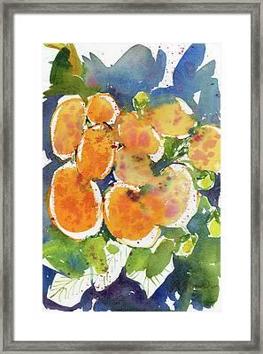 Fresh Pick No.56 Framed Print
