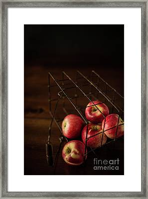 Fresh Picked Apples Framed Print by Taylor Martinsen