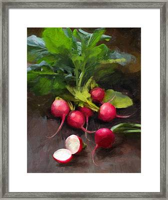 Fresh Radishes Framed Print