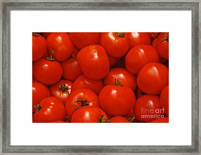 Fresh Red Tomatoes Framed Print by Thomas Marchessault