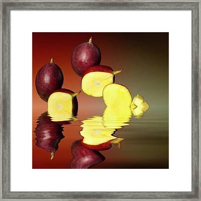 Fresh Ripe Mango Fruits Framed Print